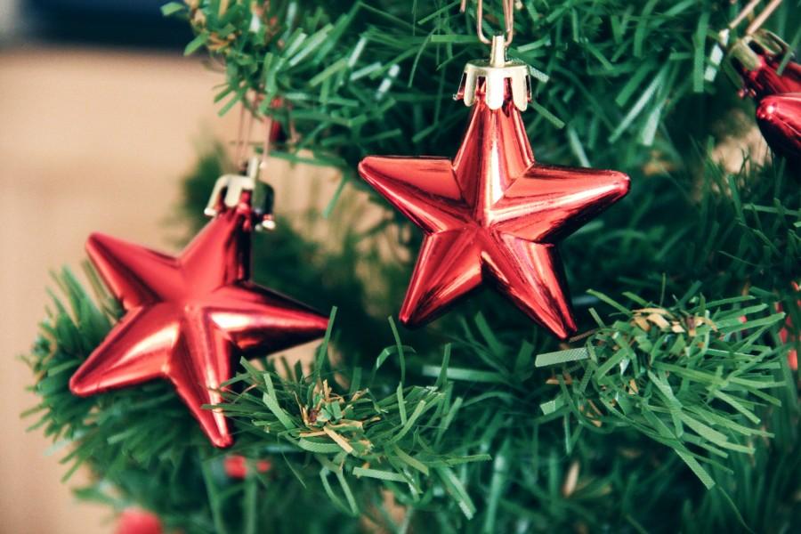 Festive Season – Our Menu's
